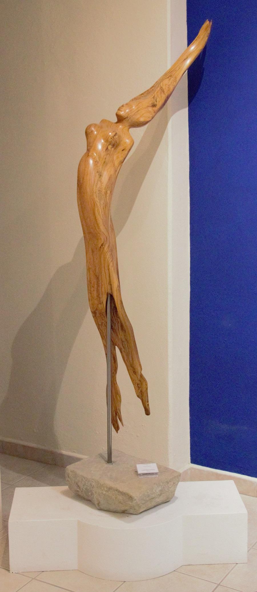 """""""Controvento"""" olivo pezzo unico - Altezza m.1,70 base cm. 37x28"""